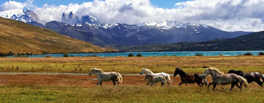 Visiter Patagonie